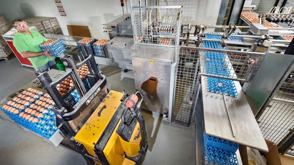 """Der """"Aufleger"""", auf den die Rohwaren von Mitarbeitern der Firma aufgelegt werden, steht am Anfang des weiteren Sortierungsprozesses"""